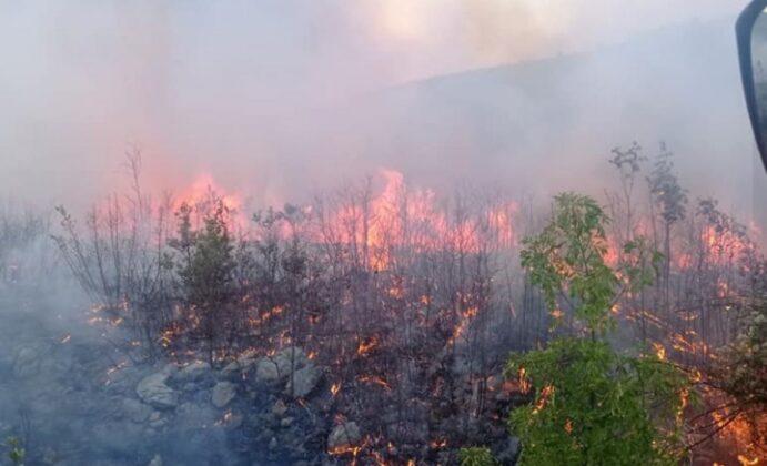 Veoma teška situacija na požarištima kod Trebinja
