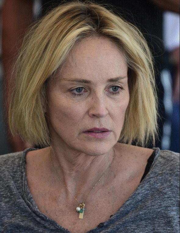 Sharon Stone: Preminuo je njezin jednogodišnji nećak, zatajili su mu organi...