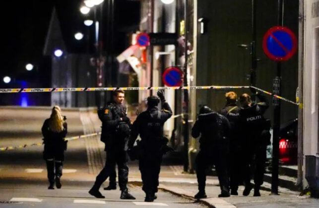 Muškarac lukom i strijelom ubio nekoliko ljudi na jugoistoku Norveške